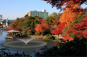 高岡古城公園紅葉01.jpg