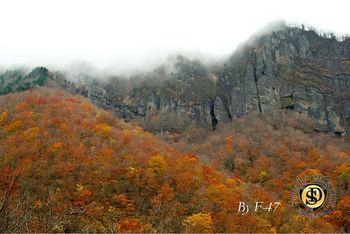 二口峡谷紅葉.jpg