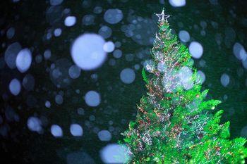 函館クリスマスファンンタジー03.jpg