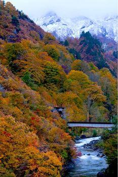田子倉湖紅葉02.jpg